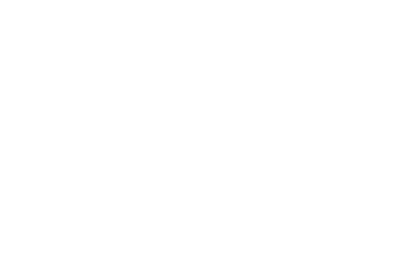 South Land Roofing White Logo